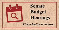 Senate Budget Hearing